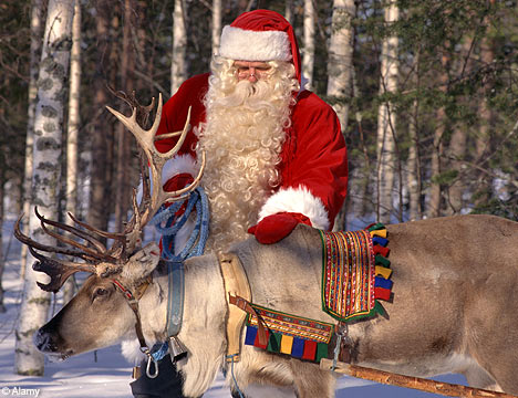 Lovely-Christmas-Reindeer1.jpg